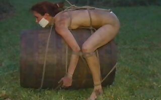 Excellent xxx scene Vintage try to watch for , check it